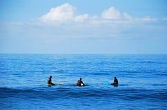 Взойдите на борт серферов ждать волну в пляже Laguna, Калифорнии Стоковые Фотографии RF