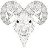 Взрослая antistress голова картины штосселя, Астрахань расцветки Иллюстрация черных линий doodle, белая предпосылка Стоковое фото RF