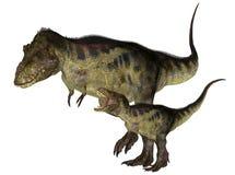взрослые детеныши tyrannosaurus иллюстрация вектора