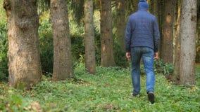 Взрослый человек идя собака в древесинах здоровье природы концепции видеоматериал