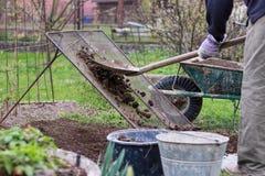 Взрослый человек работает на саде Почва лопаткоулавливателя человека через домодельный экран для сортировать на камнях и глине До стоковое изображение