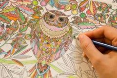 Взрослые книги расцветки с карандашами, новой тенденцией сбрасывать стресса, персоной концепции mindfulness крася иллюстративной Стоковая Фотография RF