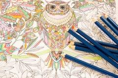 Взрослые книги расцветки с карандашами, новой тенденцией сбрасывать стресса, персоной концепции mindfulness крася иллюстративной Стоковые Фотографии RF