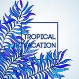 взрослые молодые Иллюстрация вектора тропической ладони иллюстрация вектора