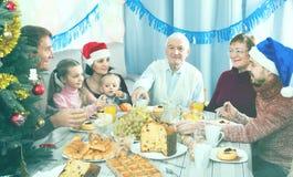 Взрослые члены семьи делая переговор стоковые изображения rf