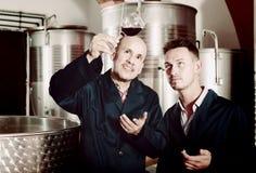 Взрослый 2 работника рассматривая образец вина Стоковые Фото
