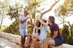 2 взрослых пары общаясь outdoors делают здравицу, Ibiza Стоковая Фотография