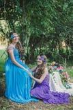 2 взрослых сестры, близнецы Стоковые Фотографии RF