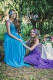 2 взрослых сестры, близнецы Стоковые Изображения RF