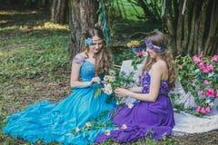 2 взрослых сестры близнецы Стоковые Изображения RF