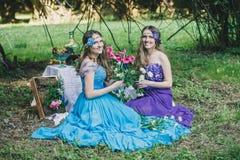 2 взрослых сестры близнецы Стоковые Фото