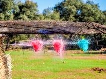 Взрыв воздушного шара воды ударянный стрелкой Стоковые Изображения