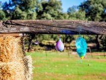 Взрыв воздушного шара воды ударянный съемкой высок-скорости стрелки Стоковые Фото