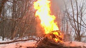 Взрыв в огне в лесе зимы видеоматериал