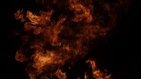 Взрыв огня на черноте сток-видео