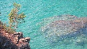 Видео- морская чисто чистая вода Отражение зелень gentile предпосылки абстракции сток-видео