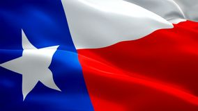 Видео отснятого видеоматериала крупного плана 1080p полное HD 1920X1080 флага Техаса государства развевая в ветре Американский на акции видеоматериалы