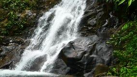 Видео природы, малый водопад в лесе подача воды через утесы после дождя Водопад спрятанный в лесах  сток-видео