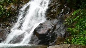 Видео природы, малый водопад в лесе подача воды через утесы после дождя Водопад спрятанный в лесах  акции видеоматериалы