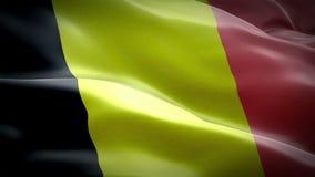 Видео флага Бельгии развевая в ветре Реалистическая бельгийская предпосылка флага Отснятый видеоматериал крупного плана 1080p пол видеоматериал