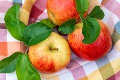 Вид красных и желтых зрелых яблок торжественный на полотенце кухни стоковая фотография