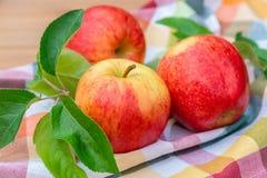 Вид красных и желтых зрелых яблок торжественный на полотенце кухни стоковое изображение rf