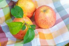 Вид красных и желтых зрелых яблок торжественный на полотенце кухни стоковые фото