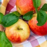 Вид красных и желтых зрелых яблок торжественный на полотенце кухни стоковое фото