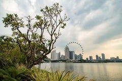 Вид на город Сингапура городской от берега моря смотря здания колеса и небоскреба ferris стоковая фотография rf