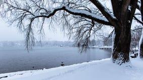 Вид на море зимы в Германии стоковое фото rf