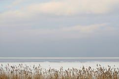 Вид на море ландшафта зимы Стоковые Фотографии RF