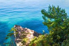 Вид на море от горы Дерево растет около воды адриатическое море Стоковая Фотография RF