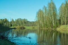 Вид на озеро вечера с отражением деревьев в воде Стоковые Фотографии RF