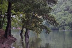 Вид на озеро отдыхает люди, вода жизнь Стоковые Изображения RF
