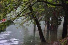 Вид на озеро отдыхает люди, вода жизнь Стоковая Фотография