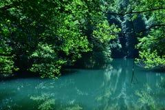 Вид на озеро отдыхает люди, вода жизнь Стоковое Изображение