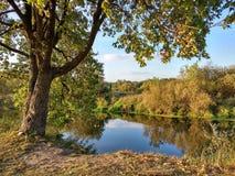 Вид на озеро с деревьями осени около города Nizhny Novgorod, России стоковое изображение rf
