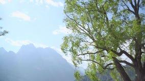 Вид на озеро Garda видеоматериал