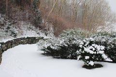 Вид на сад на зиме Стоковое Изображение
