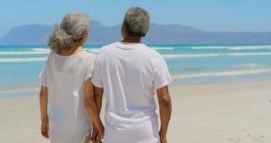 Вид сзади активных старших Афро-американских пар держа руки и стоя на пляже 4k акции видеоматериалы