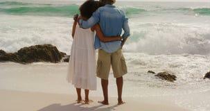 Вид сзади Афро-американских пар стоя совместно на пляже 4k сток-видео