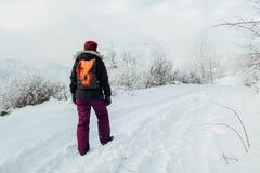 Вид сзади женского туриста с рюкзаком идя вдоль трека снега Стоковые Изображения RF
