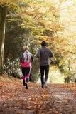 Вид сзади зрелых пар бежать через полесье осени Стоковое Изображение RF