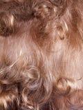 Вид сзади мальчика волос предпосылки белокурое курчавое красное, текстура Стоковая Фотография