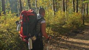 Вид сзади отца В чашке сухие листья осени перемещения семьи Окружающая среда людей горами, реками, потоками сток-видео