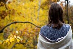 Вид сзади от задней части девушки в сером платье которое создано программу-оболочку в шарфе или шали и смотрит лес с желтым цвето стоковые изображения