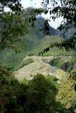Вид с воздуха взгляда цитадели picchu machu от горы Huayna Picchu, Machu Picchu, Cusco, Urubamba, Перу, археологических раскопок Стоковое Фото