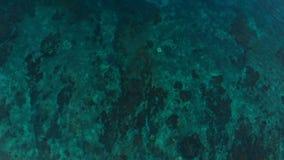 Вид с воздуха с водой океана Предпосылка моря от тропических островов сток-видео