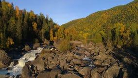 Вид с воздуха водопада, летая над лесом осени, водопад с большими камнями сток-видео