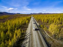 Вид с воздуха вождения автомобиля через лес на проселочной дороге E стоковые изображения